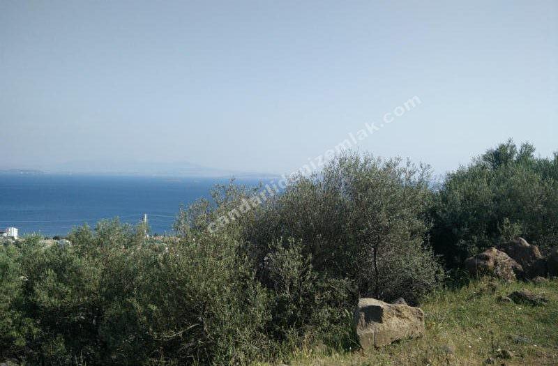 Çandarlı Eyko da Satılık Deniz Manzaralı Kelepir Arsa